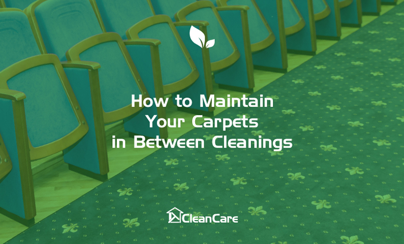 How to maintain your carpets in between cleanings