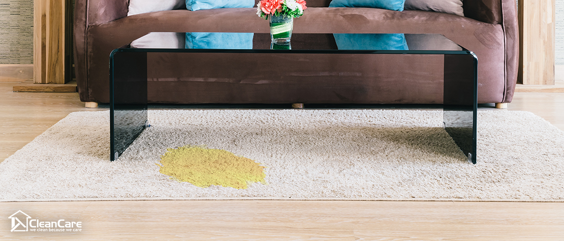 yellow carpet stain needs professional carpet cleaning